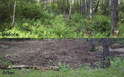 NorthPipe_mulching-and-Landclearing4