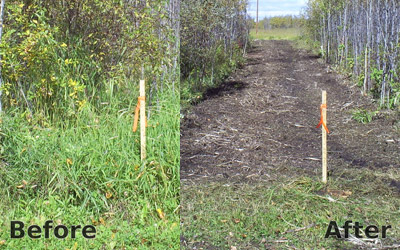 NorthPipe_mulching-and-Landclearing5